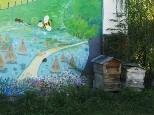 Les ruchers de la Margeride